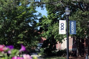 The university quad